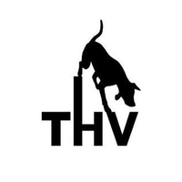 Logo Traiskirchner Hundeverein